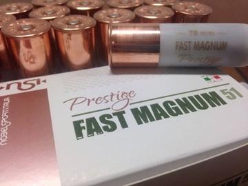 Εικόνα της Φυσίγγια 51gr NSI Prestige Fast Magnum Νº4