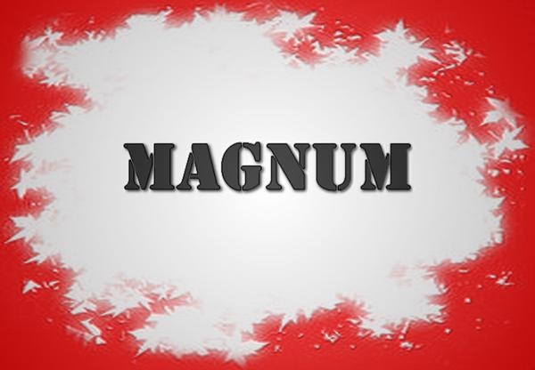 Εικόνα για την κατηγορία MAGNUM