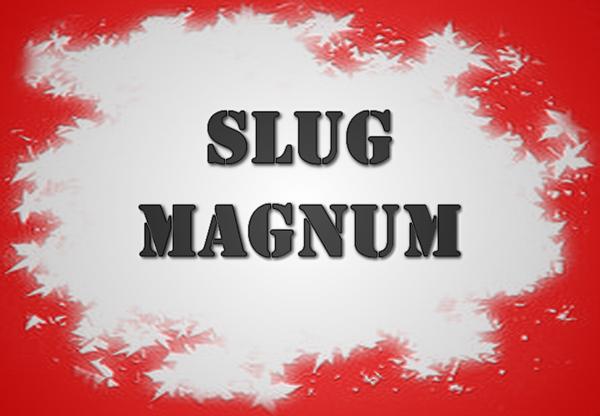 Εικόνα για την κατηγορία Μονόβολα MAGNUM
